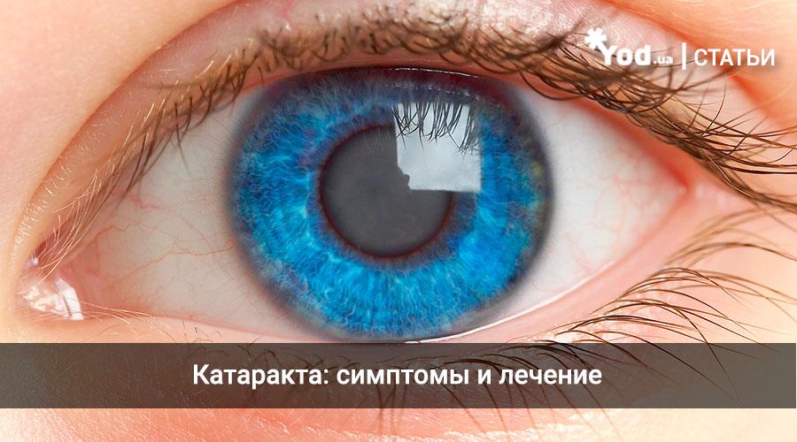 Кодирование от алкоголизма в каневской реабилитация наркозависимых в православных сообществах украины